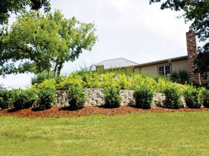 landscaping company mowing franklin tn